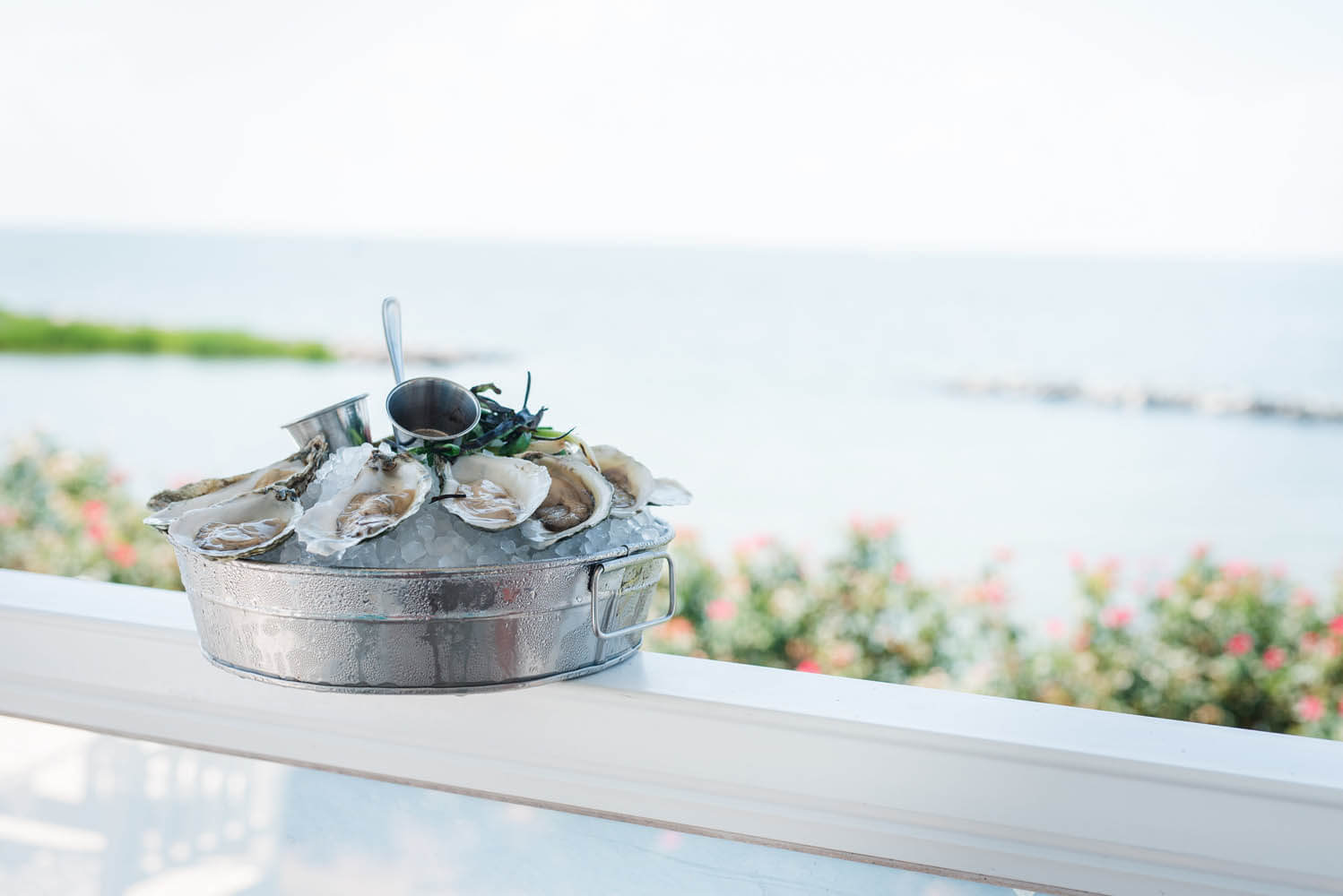 Close up of a plate with ice and mussels, beach in the background